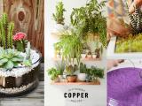 creative indoor gardens blog simphome com